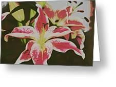 The Lily 1 Greeting Card