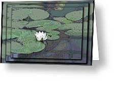The Lily Bloom Greeting Card