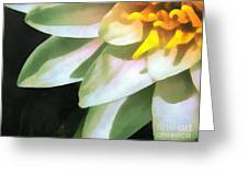 The Lily Flower Greeting Card by Odon Czintos