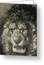 The Lion, King Of Beasts.  From El Greeting Card