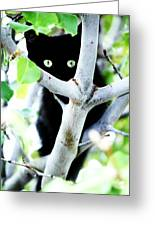 The Little Huntress Greeting Card