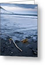 The Lovely Seascape Greeting Card