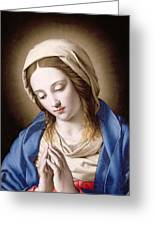 The Madonna Praying Greeting Card by Il Sassoferrato