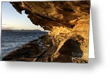 The Malaspina Galleries Greeting Card