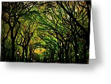 The Mall In Fall Greeting Card