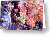 The Many Colors Of Petrified Wood Greeting Card