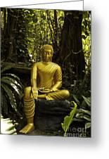 The Mercy Of Buddha Greeting Card