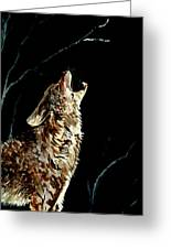 The Night Of The Wolf Greeting Card