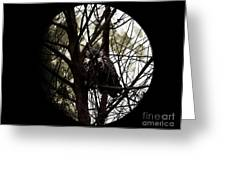 The Night Owl And Harvest Moon 2 Greeting Card