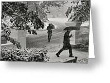 The  October Snow Greeting Card