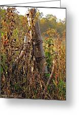 The Old Fence Post Greeting Card