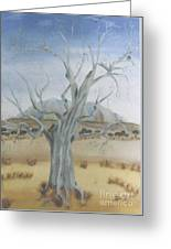 The Old Gum Tree Greeting Card by Debra Piro