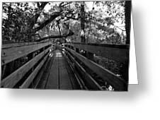 The Old Hillsborough Bridge Greeting Card