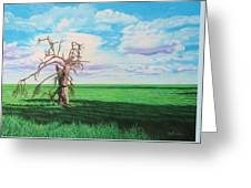 The Old Man On Green Valley Road Greeting Card