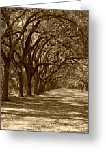 The Old South Series In Sepia Greeting Card