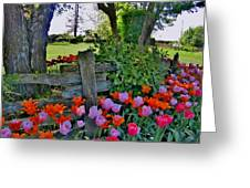 The Other Fence Greeting Card