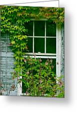 The Other Window Greeting Card by Lisa  DiFruscio