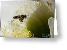 The Overloaded Bee Greeting Card