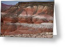 The Painted Desert  8018 Greeting Card