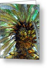 The Palm Greeting Card