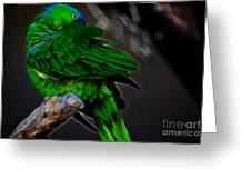 The Parrot Fractal Greeting Card