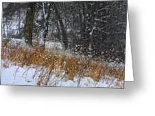 The Pasture Lane Greeting Card