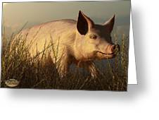 The Pink Pig Greeting Card