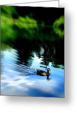 The Pond - Central Park Nyc Greeting Card by Maria Scarfone
