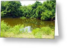 The Pond View Greeting Card