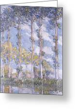 The Poplars Greeting Card by Claude Monet