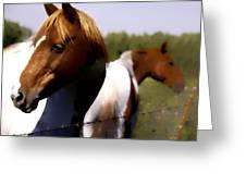 The Prairie Horses Greeting Card