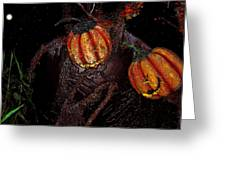 The Pumpkins In The Field Greeting Card