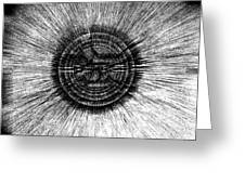 The Pupil Of The Eye Greeting Card