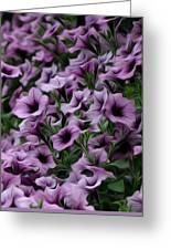 The Purple Sea Greeting Card