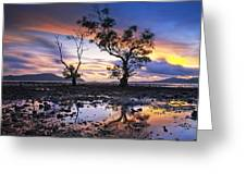 The Reflex Of Tree In Sunset Greeting Card by Arthit Somsakul