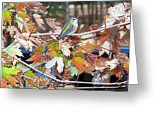 The Resting Tree Greeting Card