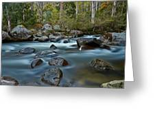 The River Wild Greeting Card