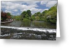 The Riverside And Weir - Bakewell Greeting Card