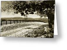 The Road Home -2 Greeting Card