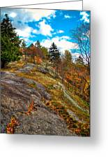The Rocks Above Eagle Bay Greeting Card
