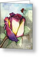The Rose Greeting Card by Nora Blansett
