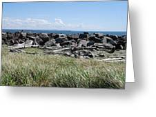 The Rugged Coast Greeting Card