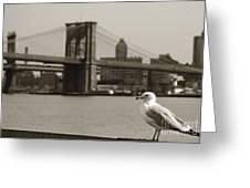 The Seagull Of The Brooklyn Bridge Greeting Card