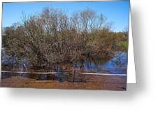The Spring Flood Greeting Card