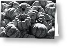 The Squash Harvest In Black And White Greeting Card