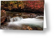 The Steady River Flow Greeting Card
