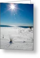 The Sun Shines Down On Freshly Fallen Snow On Bristol Beach Greeting Card
