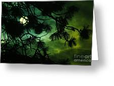 The Sun Through Clouds And Branches  Greeting Card