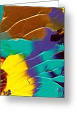 The Sunflower Greeting Card by Nan Bilden