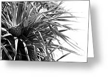The Tourist Pineapple Black And White Greeting Card